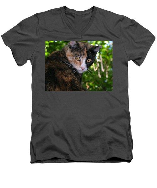 Tortie Men's V-Neck T-Shirt
