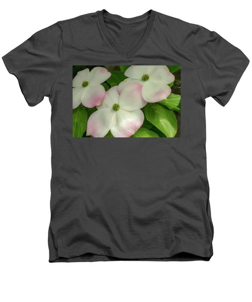 Touch Of Pink2 Men's V-Neck T-Shirt