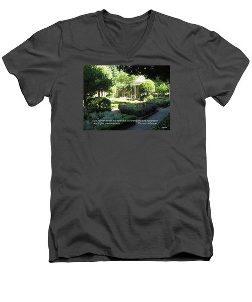 Tranquility And Occupation Men's V-Neck T-Shirt