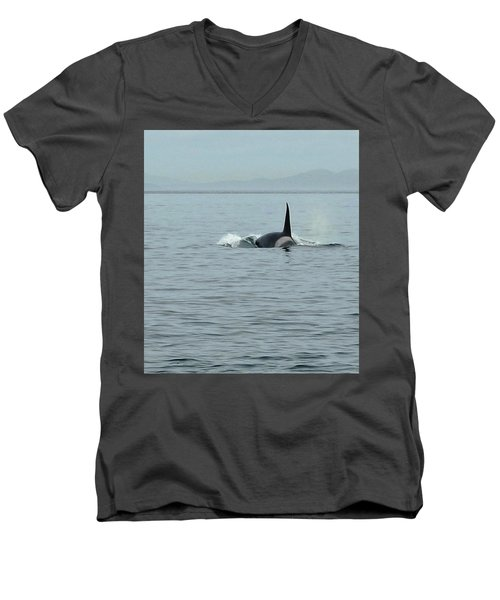 Transient Killer Whale Men's V-Neck T-Shirt by Brian Chase