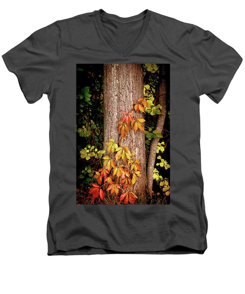 Tree Adornment Men's V-Neck T-Shirt