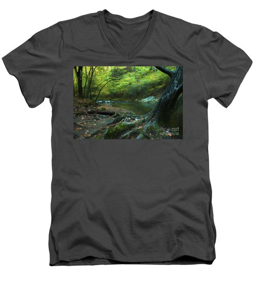 Tree By Water Men's V-Neck T-Shirt by Lena Auxier