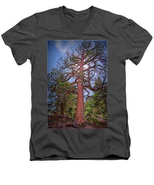 Tree Cali Men's V-Neck T-Shirt