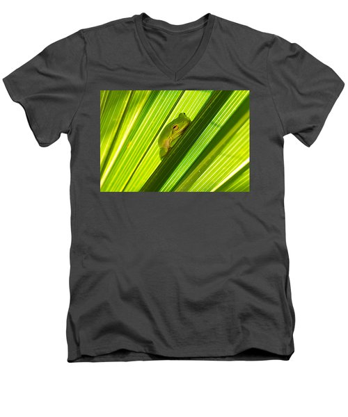 Tree Frog And Palm Frond Men's V-Neck T-Shirt by Kenneth Albin
