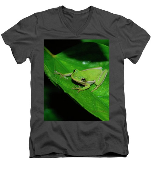 Tree Frog On Hibiscus Leaf Men's V-Neck T-Shirt by DigiArt Diaries by Vicky B Fuller