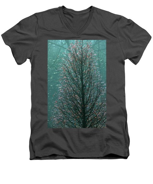 Tree In Autumn, With Red Leaves, Blue Background, Sunny Day Men's V-Neck T-Shirt