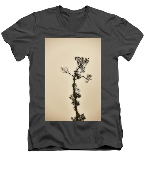 Tree In The Mist Men's V-Neck T-Shirt by Rajiv Chopra