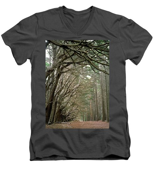 Tree Lane Men's V-Neck T-Shirt