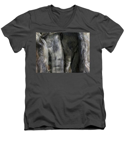 Men's V-Neck T-Shirt featuring the photograph Tree Memories # 20 by Ed Hall