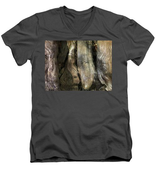 Men's V-Neck T-Shirt featuring the photograph Tree Memories # 24 by Ed Hall