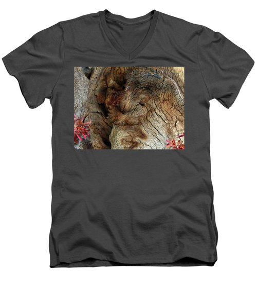 Men's V-Neck T-Shirt featuring the photograph Tree Memories # 34 by Ed Hall