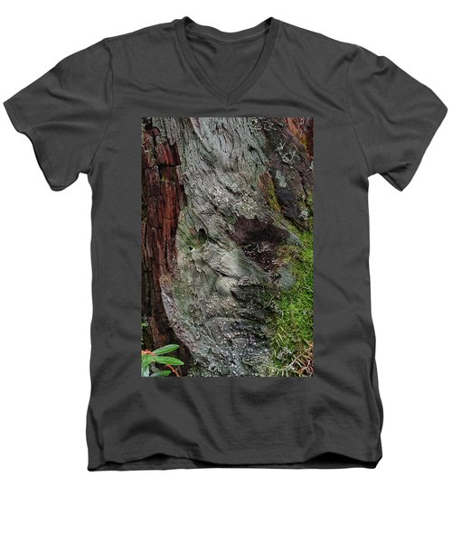Men's V-Neck T-Shirt featuring the photograph Tree Memories # 38 by Ed Hall