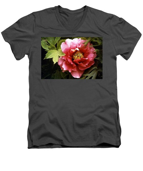 Tree Peony Men's V-Neck T-Shirt