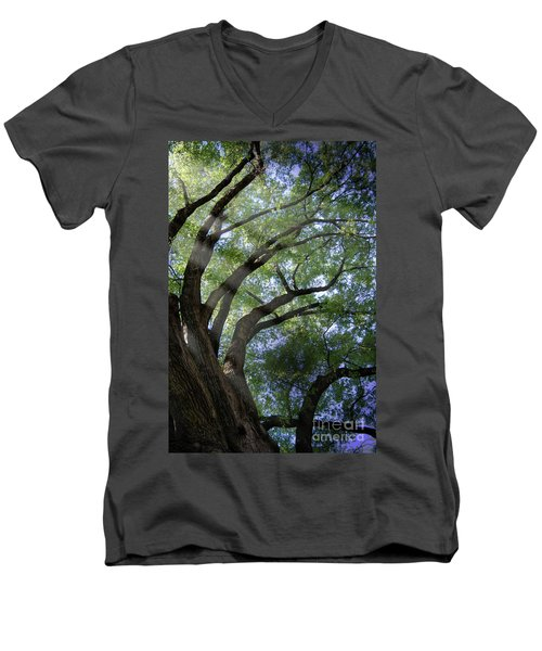 Men's V-Neck T-Shirt featuring the photograph Tree Rays by Brian Jones