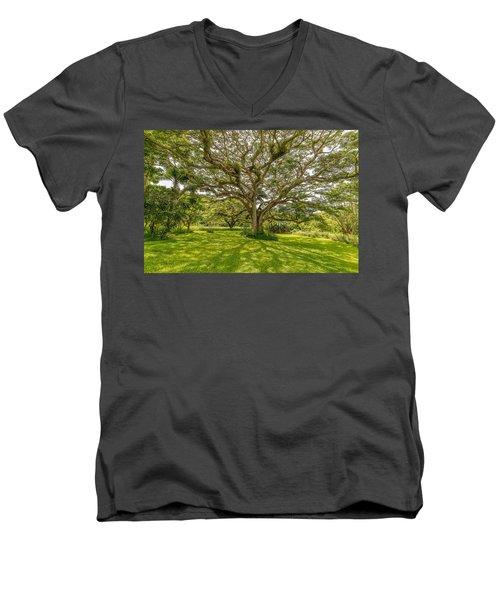 Treebeard Men's V-Neck T-Shirt