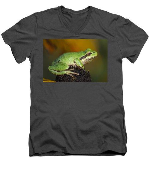 Treefrog On Rudbeckia Men's V-Neck T-Shirt