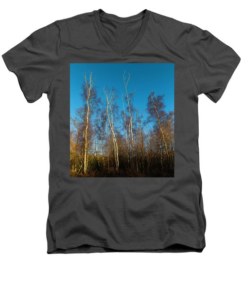 Trees And Blue Sky Men's V-Neck T-Shirt