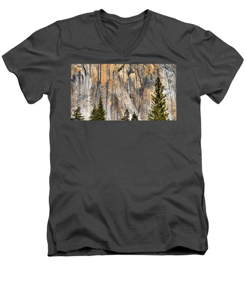 Trees And Granite Men's V-Neck T-Shirt by Josephine Buschman