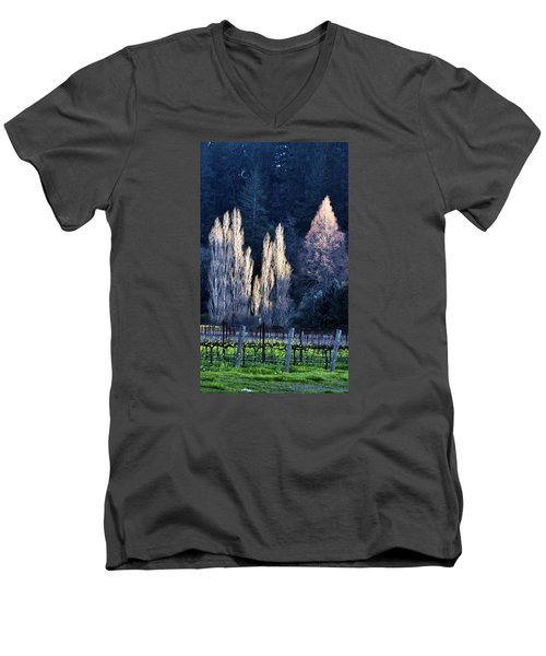 Trees In Fall Napa Valley Men's V-Neck T-Shirt