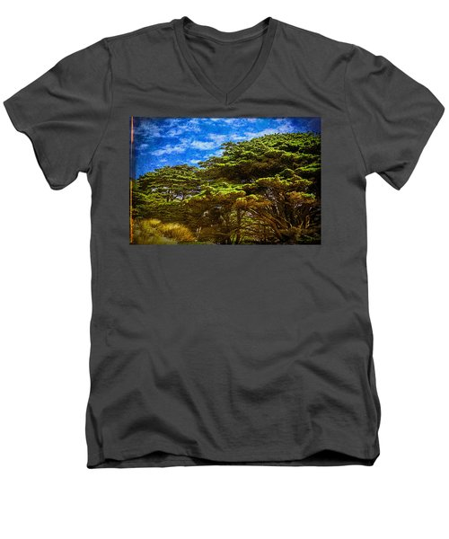 Trees On An Oregon Beach Men's V-Neck T-Shirt