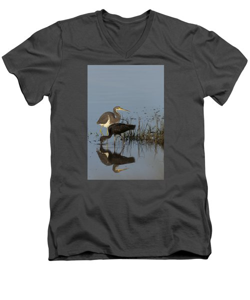 Tri-colored Heron And Glossy Ibis Men's V-Neck T-Shirt