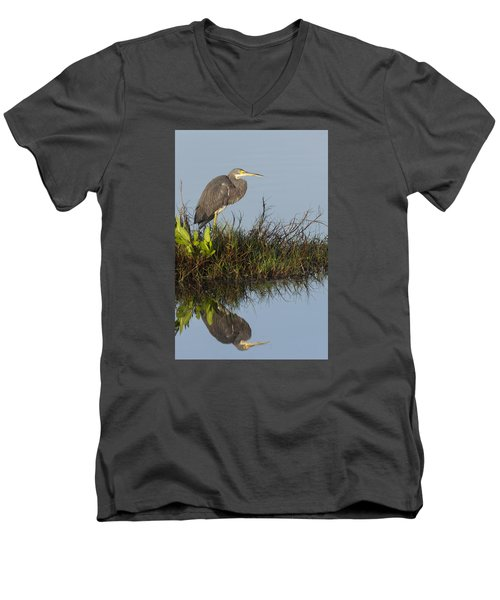 Tri-colored Heron And Reflection Men's V-Neck T-Shirt