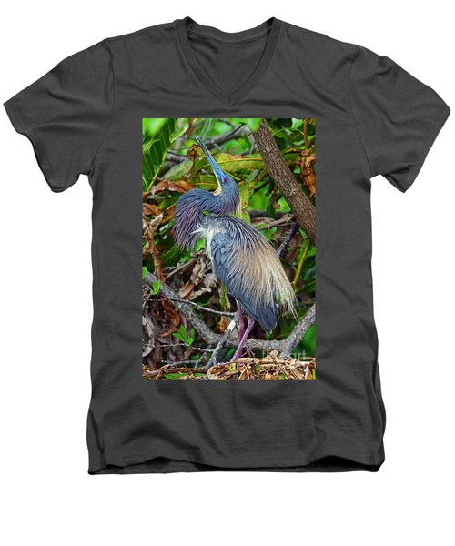 Tricolor Breeding Display Men's V-Neck T-Shirt by Larry Nieland