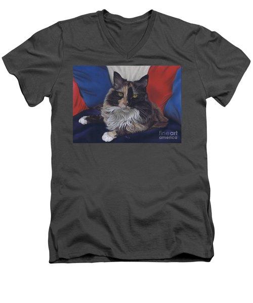 Tricolore Men's V-Neck T-Shirt