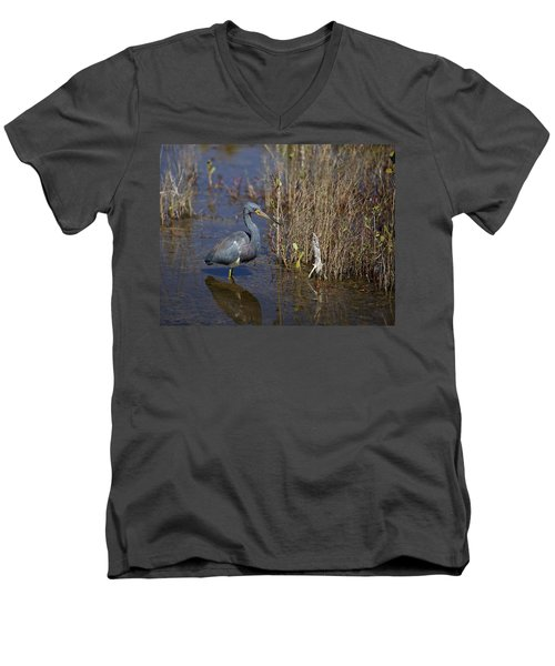 Tricolored Heron Wading Men's V-Neck T-Shirt