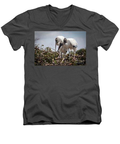 Trio Of Storks Men's V-Neck T-Shirt by Jim Gillen