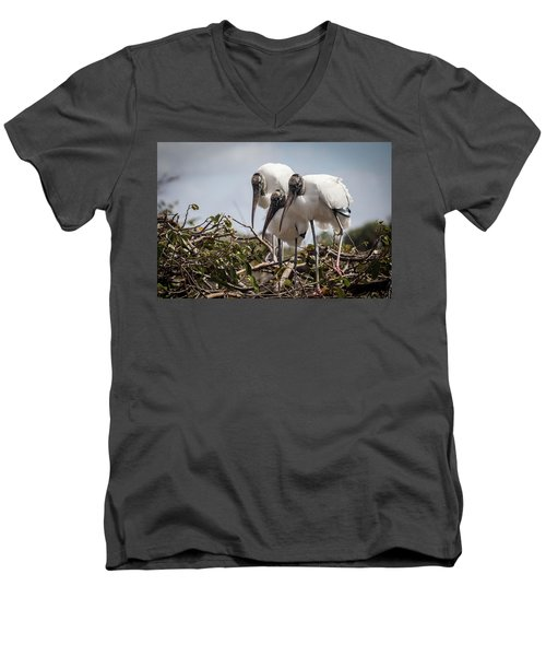 Trio Of Wood Storks Men's V-Neck T-Shirt