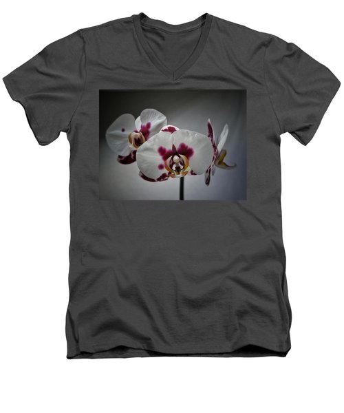 Men's V-Neck T-Shirt featuring the photograph Triplets by Karen Stahlros