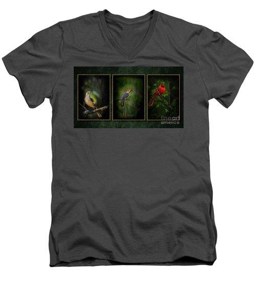 Triptych Men's V-Neck T-Shirt