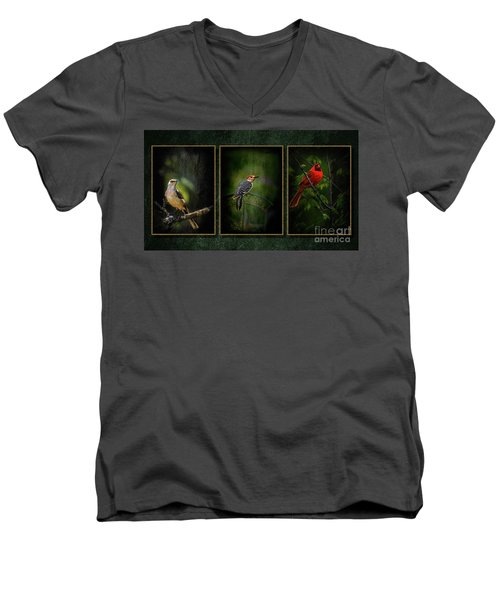 Triptych Men's V-Neck T-Shirt