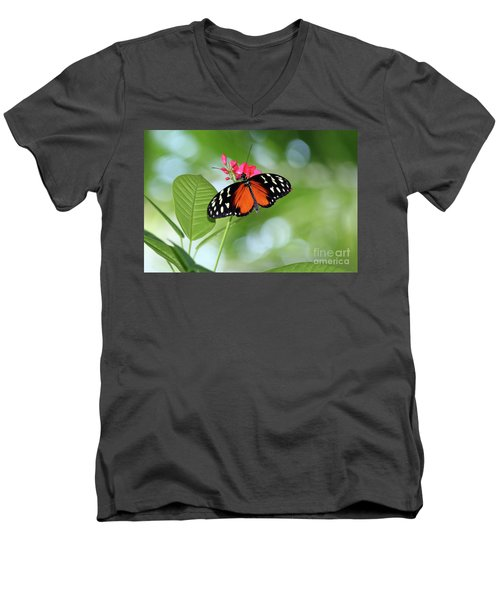 Tropical Hecale Butterfly Men's V-Neck T-Shirt