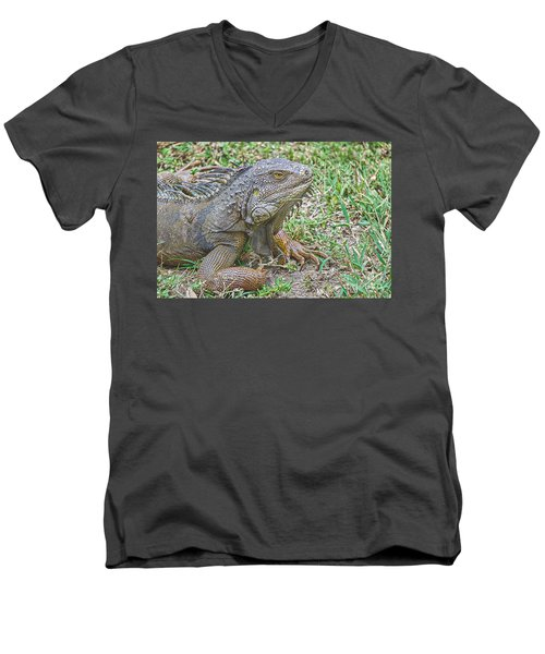 Tropical Wonder Men's V-Neck T-Shirt by Judy Kay