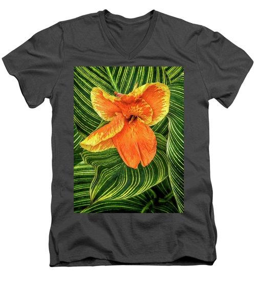 Tropicanna Beauty Men's V-Neck T-Shirt