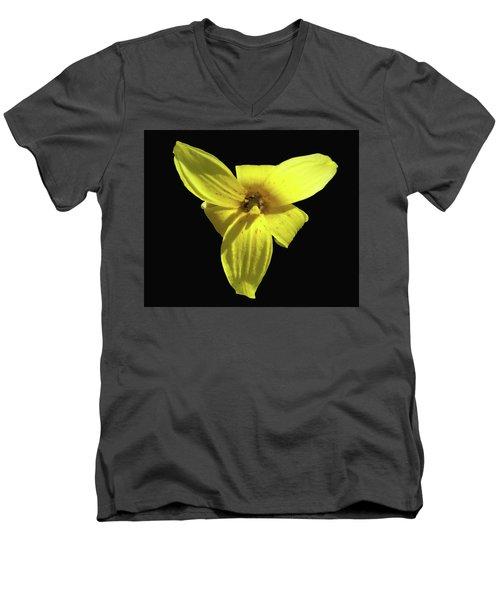 Trout Lily Men's V-Neck T-Shirt