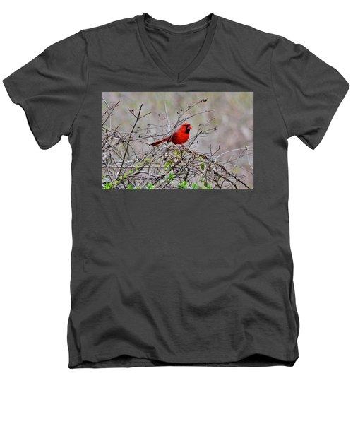 Troy Men's V-Neck T-Shirt