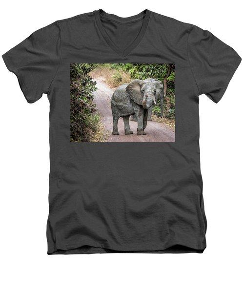 True Friendship Men's V-Neck T-Shirt