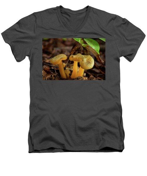 Trugid Glabrous Highlighted Mushroom Cluster Men's V-Neck T-Shirt