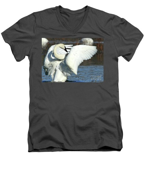 Men's V-Neck T-Shirt featuring the photograph Trumpeter Swan by Paula Guttilla