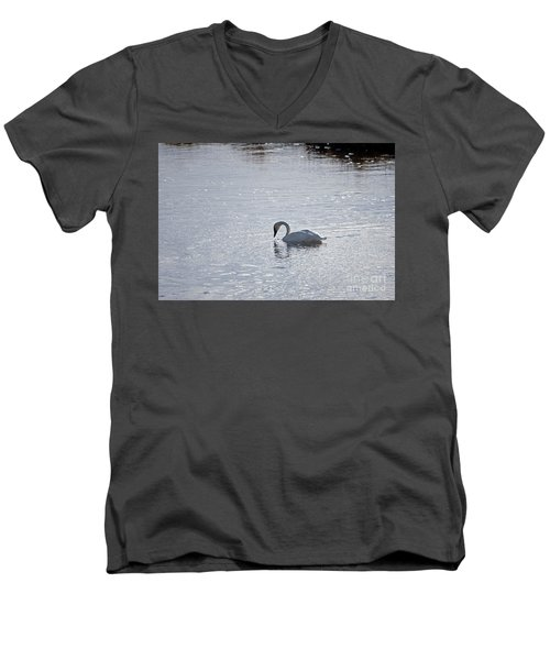 Trumpeter Swan Yellowstone Men's V-Neck T-Shirt