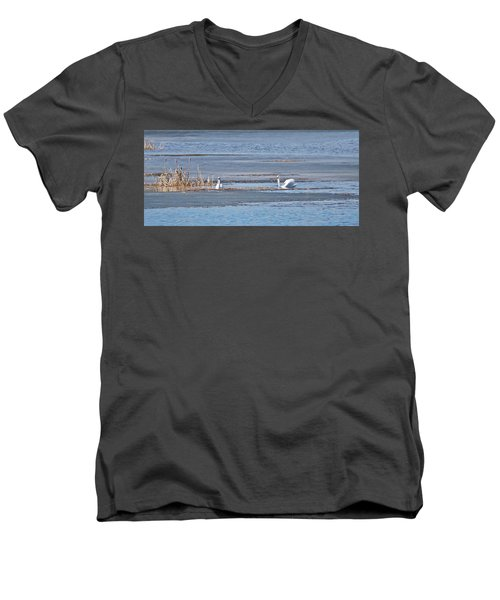 Trumpeter Swans 0933 Men's V-Neck T-Shirt by Michael Peychich