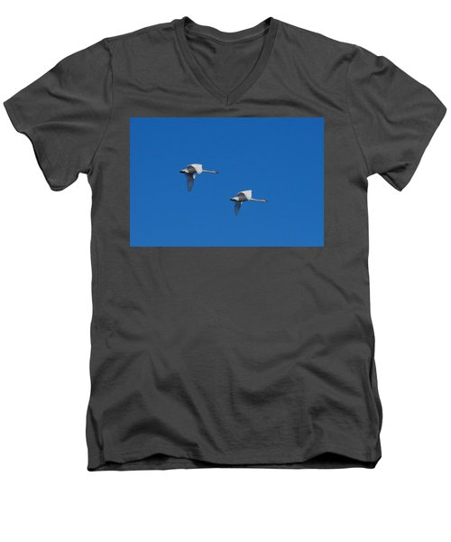 Trumpeter Swans 1725 Men's V-Neck T-Shirt by Michael Peychich
