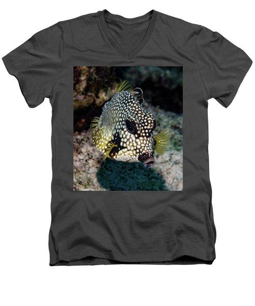 Men's V-Neck T-Shirt featuring the photograph Trunkfish Portrait by Jean Noren