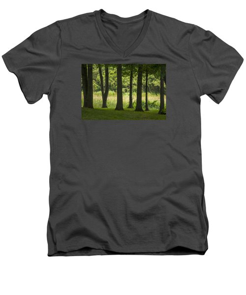 Trunks In A Row Men's V-Neck T-Shirt