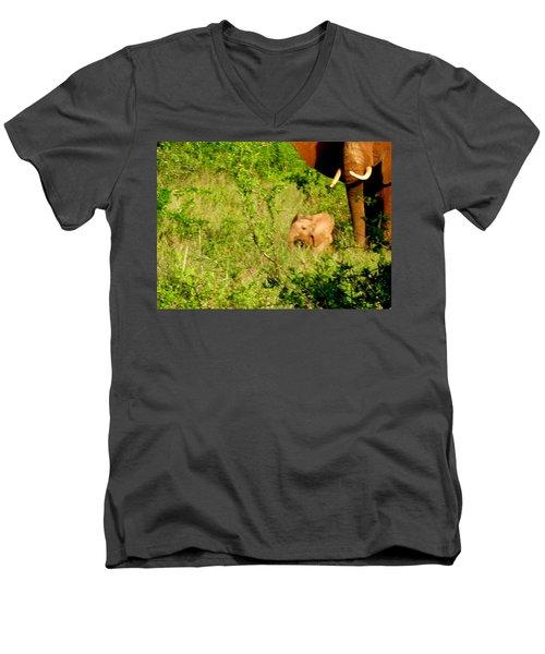 Tsavo Calf Men's V-Neck T-Shirt