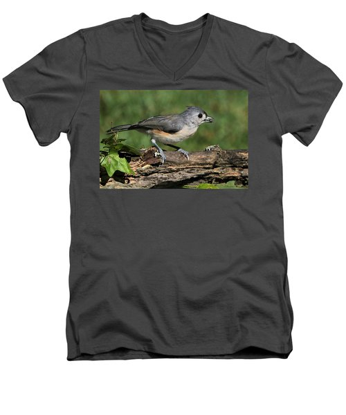 Tufted Titmouse On Tree Branch Men's V-Neck T-Shirt