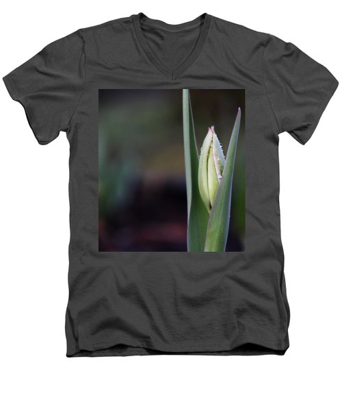 Tulip Bud Men's V-Neck T-Shirt by Katie Wing Vigil